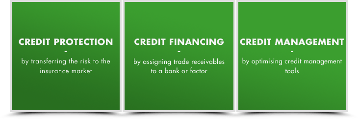 Credit Protection - Credit Financing - Credit Management