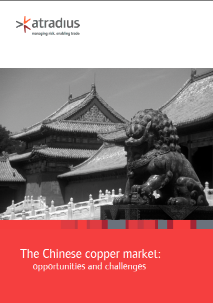 The Chinese cooper market : opportunities and challenges