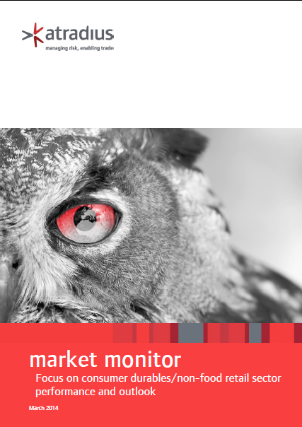 Focus on consumer durables/non-food retail sector performance and outlook