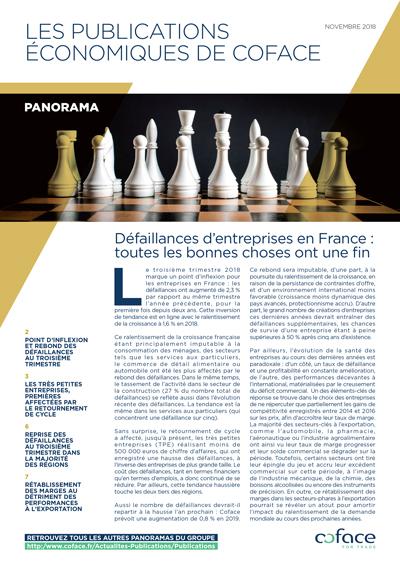 Défaillances d'entreprises en France : toutes les bonnes choses ont une fin